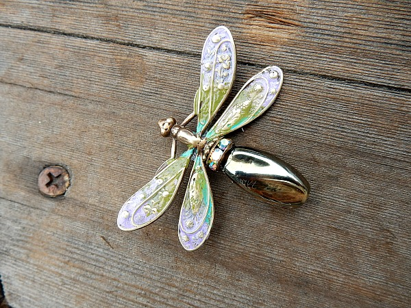 altered dragonfly 1