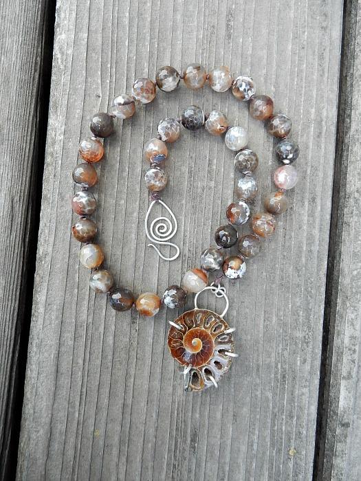 ammonite 4